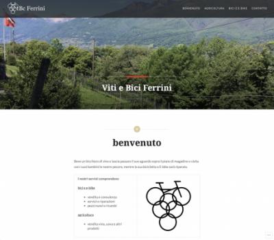 Webseite https://vtbcferrini.ch