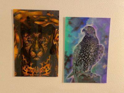 Leopard und Falke