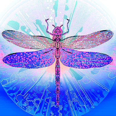 Dunkelblaue Libelle